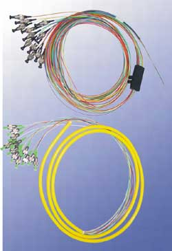 Ribbon Fan-out Patch Cords