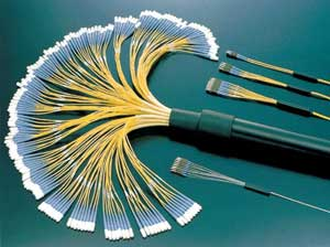 Bunched Optical Fiber Fan-Out Patch Cords
